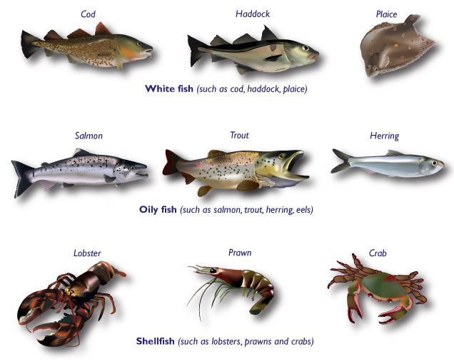 types of white fish to eat