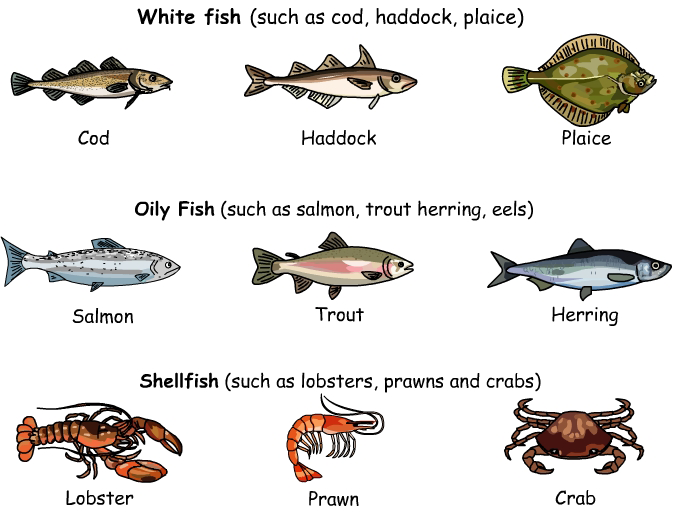 We can divide the fish we eat into 3 categories: Types of fish